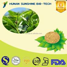 2015 new products Green Green Tea Extract P.E. tea polyphenols EGCG/ Green Tea Extract Powder