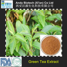 Andy Biotech Supply Polyphenols 98% Green Tea Extract Manufacturer