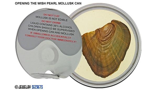 open the wishpearl.jpg