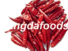 Low Price Dried chillies without stem , Dry long red chilli , Finger shape long dried red chillies