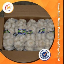 Fresh Garlic Farming For Wholesale