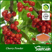 Instant Cherry Powder for Energy Drink