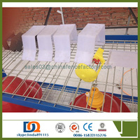 Agricultural equipment folding design layer chicken cages bird laying hens cheap a type chinese coop price poultry chicken cage