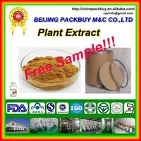 Top Quality From 10 Years experience manufacture belladonna liquid extract