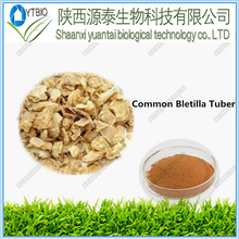 5:1 10:1 20:1 Natural Common Bletilla Rubber Extract powder made in china