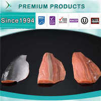 Customizable Premium IQF Frozen Salmon