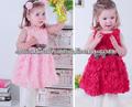 Chaleco Rose muchachas del vestido visten el vestido de la muchacha de flor de la princesa barato tridimensional verano
