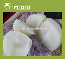 one clove garlic iqf garlic dices/square iqf garlic dices/square