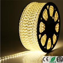 Best selling Shenzhen led supplier of 110V 120V 220V 230V ETL waterproof ip65 LED smd5050 led rgb led strip lighting led