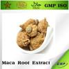 High quality BNP Brand Maca Root Extract Powder