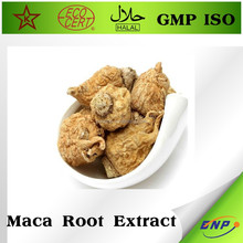 High quality BNP Brand Maca Root Extract Powder