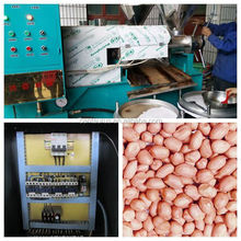 Low consumption automatic homemade oil press/mill with best price
