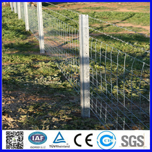 Galvanized removable metal fencing posts for field fence