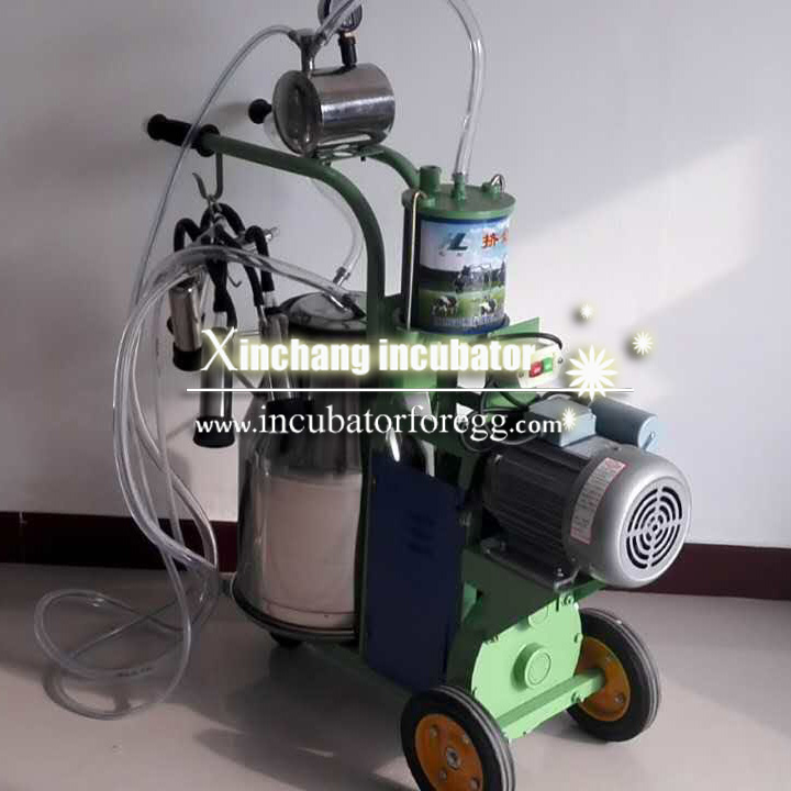 Piston milking machine (2)