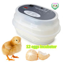 Hot sale !!! 9~12 eggs mini chicken egg incubator on special price JN12 poultry incubator machine homemade egg incubator
