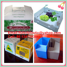 PP fluted corrugated plastic Coroplast box