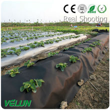 agriculture black weed control rolls nonwoven fabric