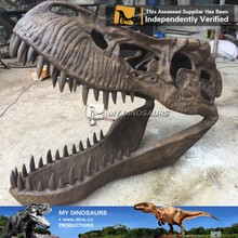 N-P-Y-79-resin dinosaur fossils head life size artificial T-rex skull skeleton for sale
