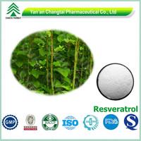 GMP Certified Hot sale Polygonum Cuspidatum Extract bulk 99% resveratrol