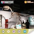 Exposición de la calidad del museo esqueleto de dinosaurio