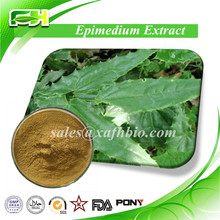 Herbal Medicine and Herbal Extract of Epimedium Extract