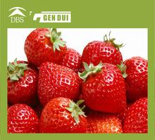delicious Frozen strawberry