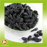 delicious dried black currant dried black currant color for sale
