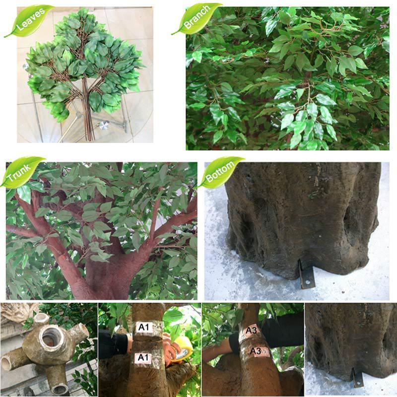 banyan-tree-details.jpg