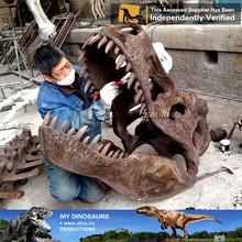 MY DINO-J27 Life size Animal skull replica