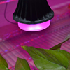 9w led grow light bulb artificial light for indoor plant