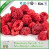 Top quality hot selling dried fruit goji berry from zhongning