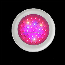 High Bright white full spectrum led grow lights China manufacturer best led grow lights 2013