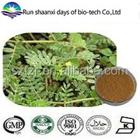 Natural sex product, medicine for long time sex Tribulus Terrestris Extract 90% Saponins