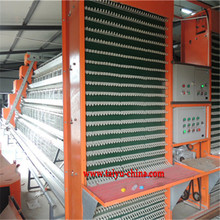 Taiyu hot sale save manpower chicken egg poultry farm
