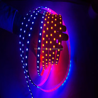 Wholesale addressable ws2801 led strip from China color changing led rope light