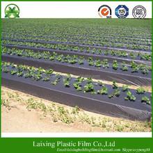 [manufacturer] PE Agriculture Black Ground Mulch Film/Cover
