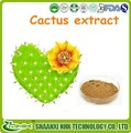 Venta caliente 100% natural de alta calidad de la planta de cactus extracto en polvo, cactus de tallo p. E 10:1 20:1