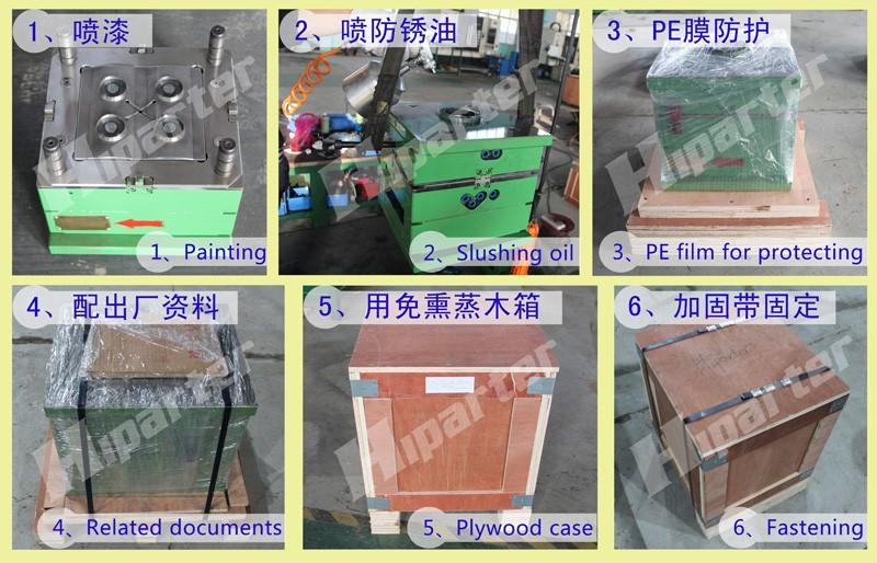 Mould Packaging.jpg