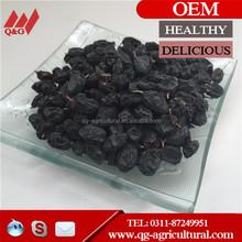 green raisin price