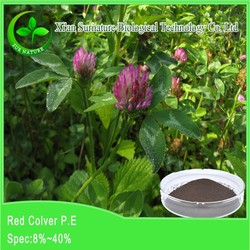 best price of red clover extract