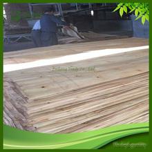 Rotary Cut Kiln Dried Big Size Eucalyptus Wood Veneer
