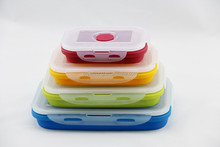 collapsible silicone insulated container for food transportation