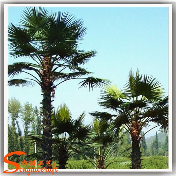 Plantas em miniatura de pl stico palmeira todos os tipos - Palmeras de plastico ...