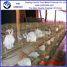 2015 best selling cheap galvanized rabbit farm cage ,high quality indoor rabbit cage,cage ( factory manufacture )