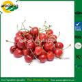 Alta puro sabor a cereza en sabores de alimentos para bebidas