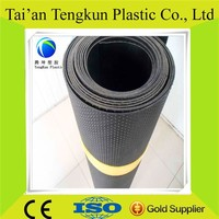 HDPE dimple geomembrane for Roof garden with professional supplier
