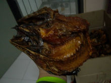 Dried fish(smoked)