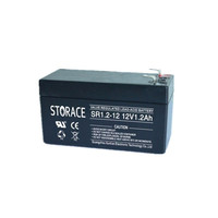 12 volt storage battery (lead-acid)