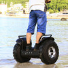 High quality self balance electric scooter 1600W 2000W for adults