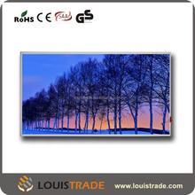 carbon crystal infrared panel ray wall heater with switch B-P4(2074)